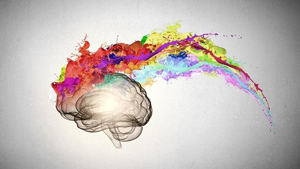 WEB - Creative Thinking - Colourful Brain.jpeg-654437-edited