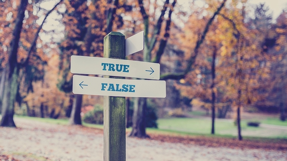 WEB - Signpost In A Park With Arrows Pointing two Opposite Directions Yowards True & False-369908-edited